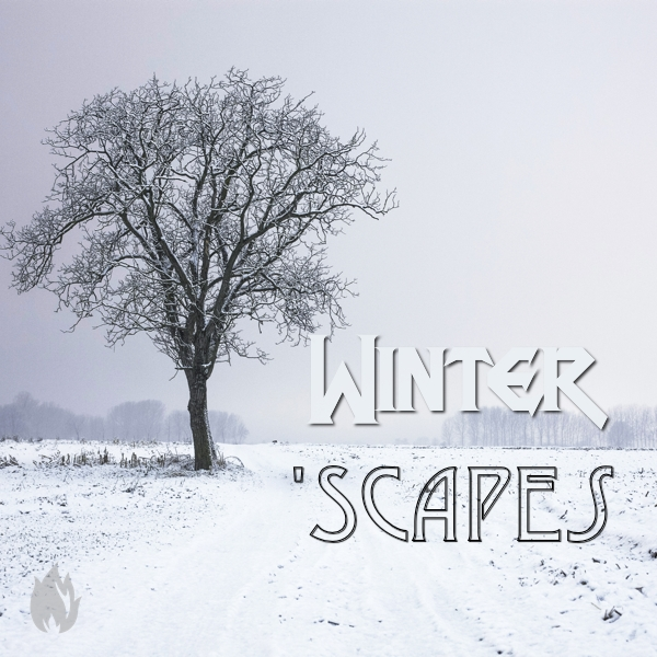 WinterScapes3
